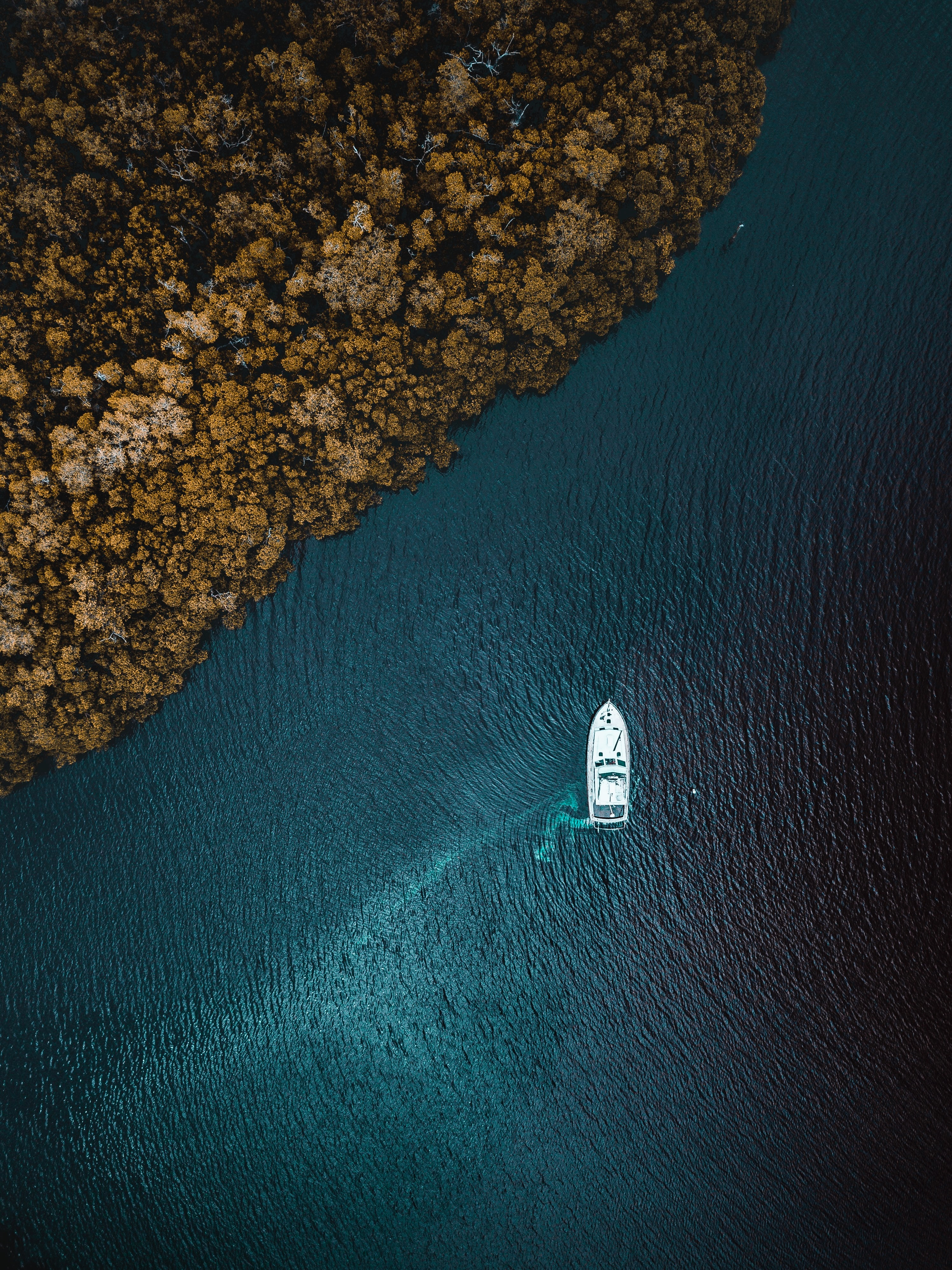 116755 download wallpaper Trees, Nature, Sea, View From Above, Shore, Bank, Yacht screensavers and pictures for free