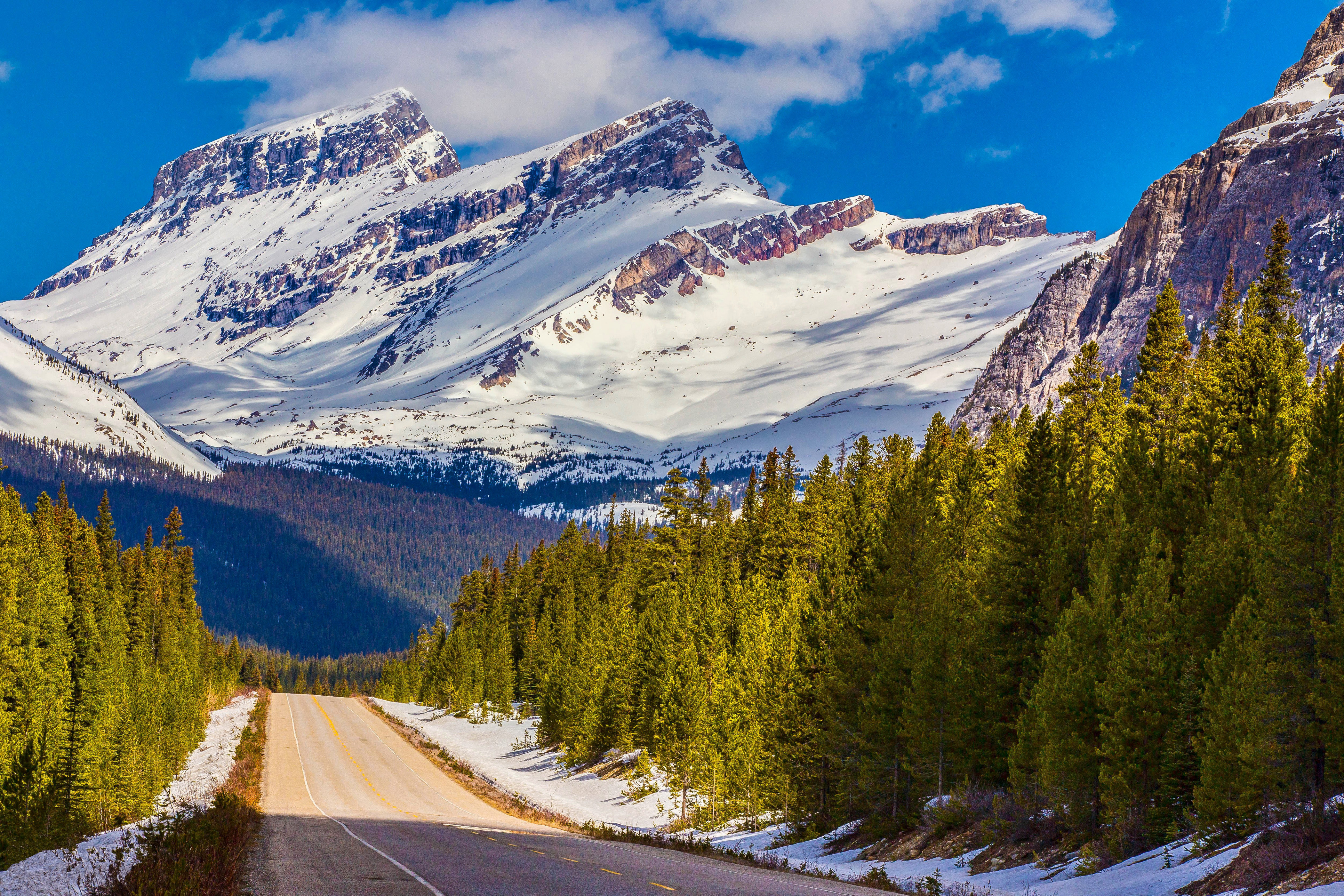 75762 Screensavers and Wallpapers Dahl for phone. Download Nature, Mountains, Snow, Canada, Road, Dahl, Distance, Albert, Alberta, Banff National Park pictures for free