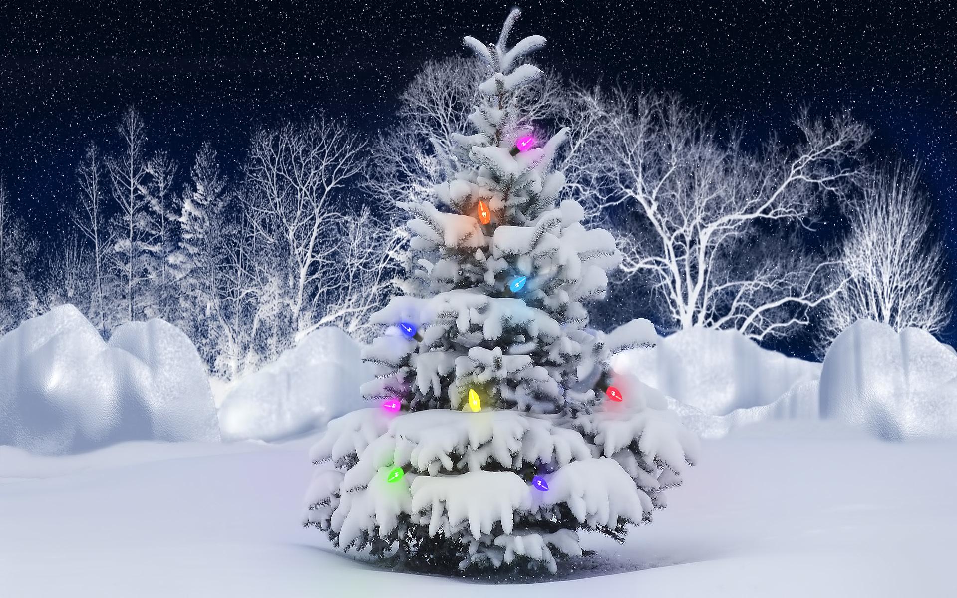 38951 скачать обои Новый Год (New Year), Праздники, Елки - заставки и картинки бесплатно
