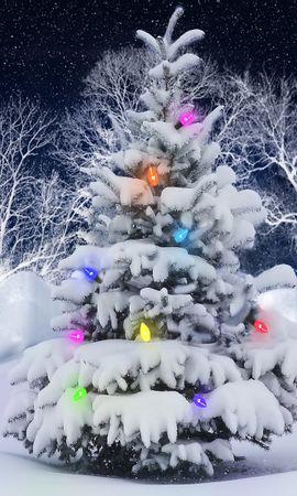 38951 скачать обои Праздники, Новый Год (New Year), Елки - заставки и картинки бесплатно