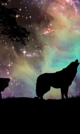 62032 Screensavers and Wallpapers Dark for phone. Download Dark, Wolf, Starry Sky, Silhouette, Art pictures for free