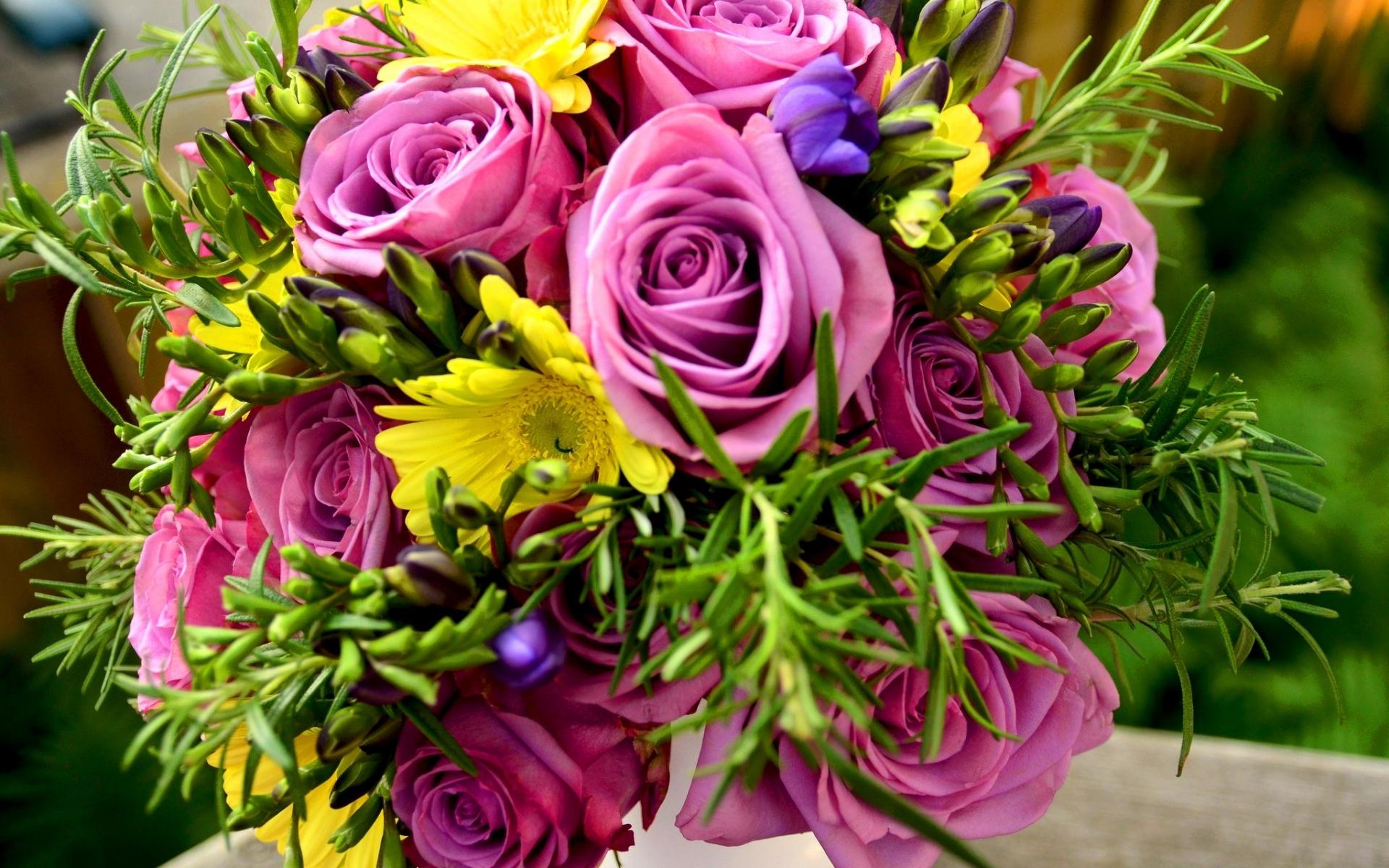35513 скачать обои Букеты, Растения, Цветы - заставки и картинки бесплатно