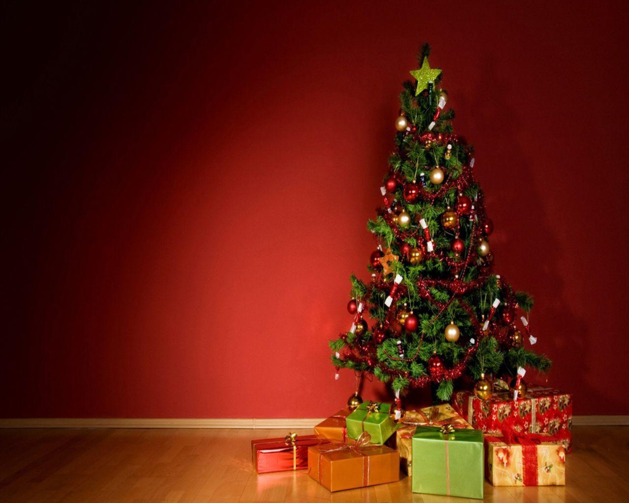 22520 télécharger le fond d'écran Fêtes, Nouvelle Année, Sapins, Noël - économiseurs d'écran et images gratuitement