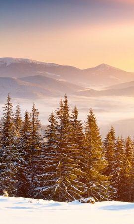 21599 скачать обои Растения, Пейзаж, Деревья, Горы, Снег, Елки - заставки и картинки бесплатно