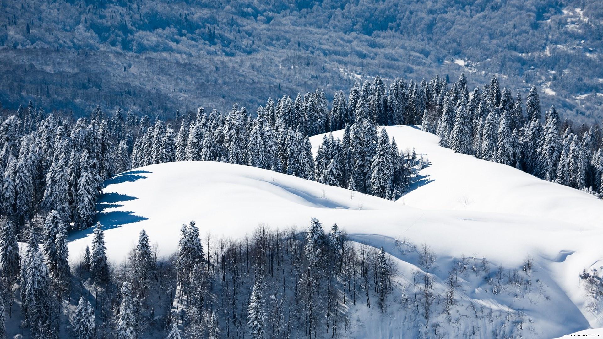 26335 скачать обои Пейзаж, Зима, Деревья, Горы, Снег - заставки и картинки бесплатно