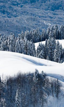 26335 télécharger le fond d'écran Paysage, Hiver, Arbres, Montagnes, Neige - économiseurs d'écran et images gratuitement
