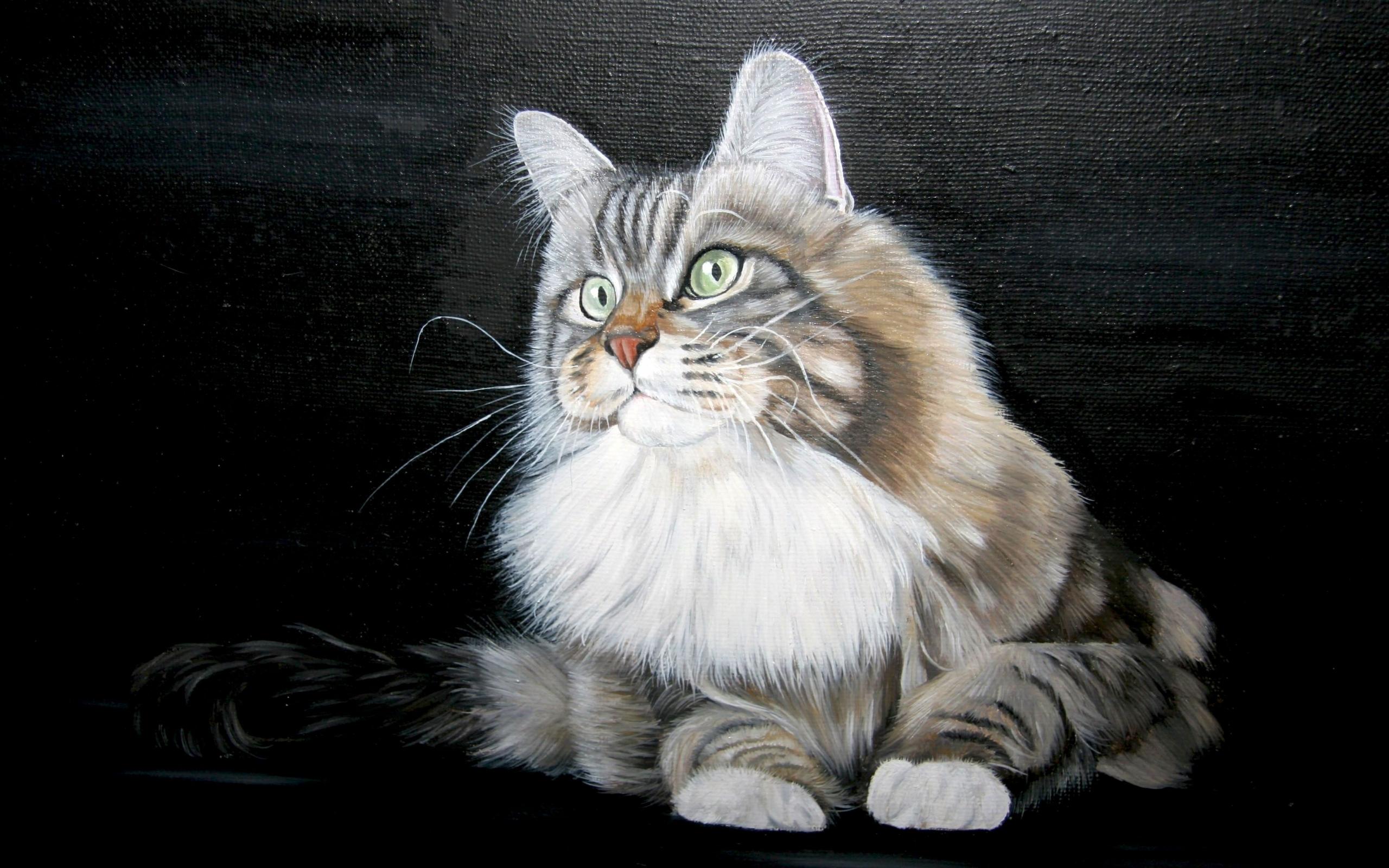 36393 скачать обои Рисунки, Животные, Кошки (Коты, Котики) - заставки и картинки бесплатно