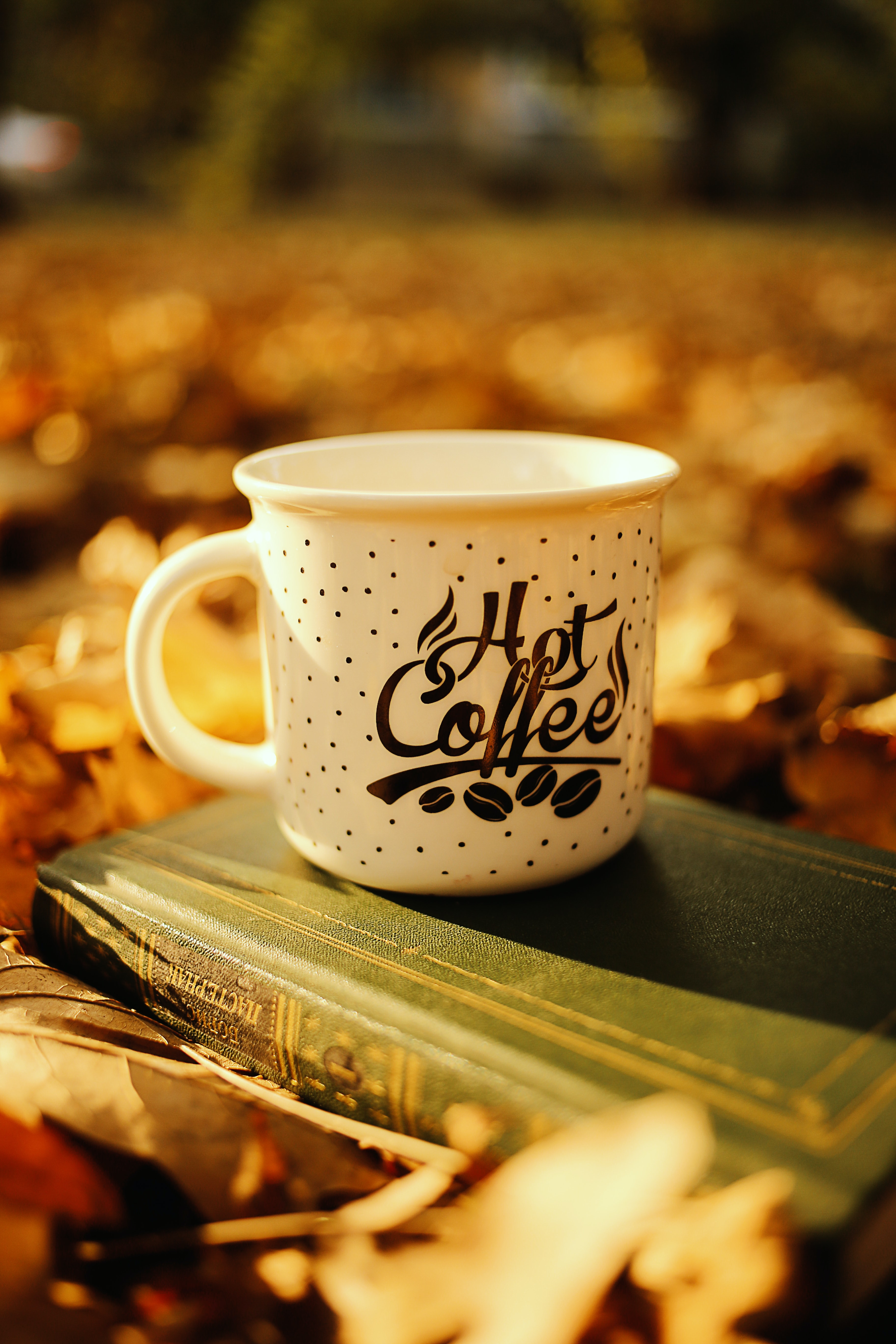 77225 Screensavers and Wallpapers Book for phone. Download Coffee, Words, Cup, Inscription, Book, Mug pictures for free
