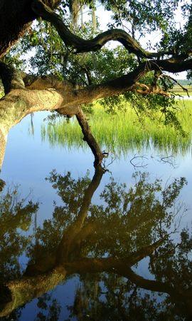 26488 скачать обои Пейзаж, Река, Деревья - заставки и картинки бесплатно