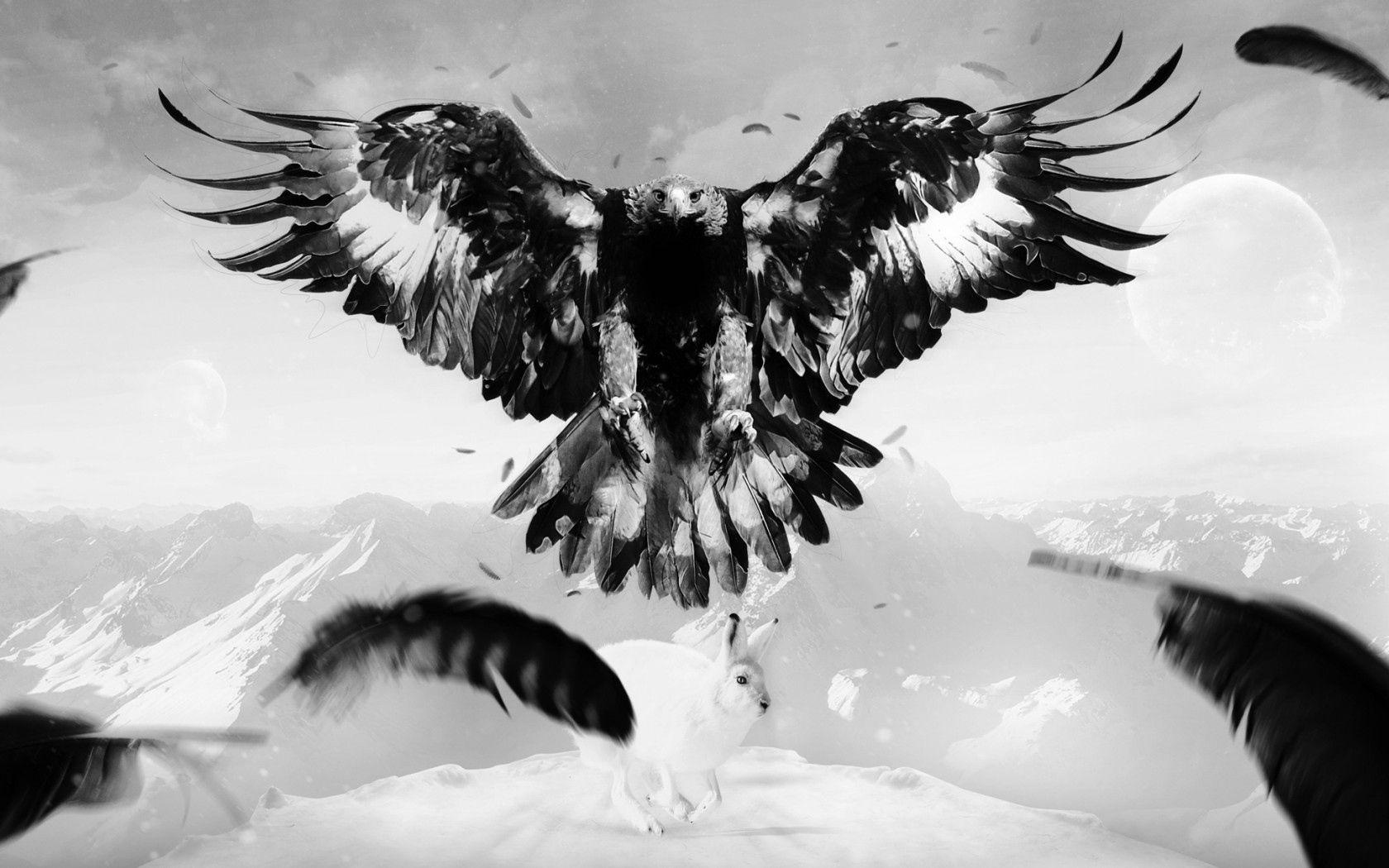 免費壁紙90423:动物, 鹰, 老鹰, 野兔, 扎亚茨, 艺术, 鸟, 山, 羽毛 下載手機圖片