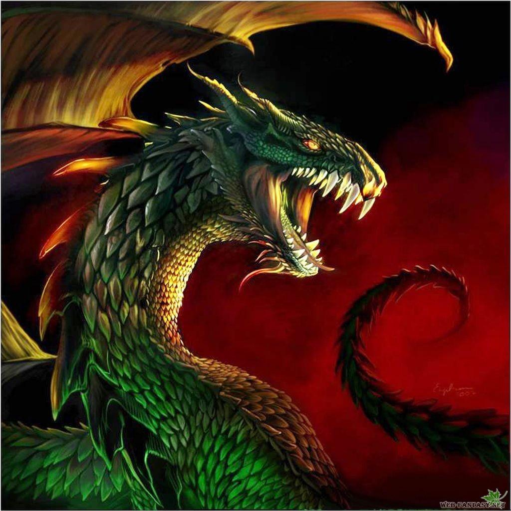 17757 Hintergrundbild herunterladen Fantasie, Dragons - Bildschirmschoner und Bilder kostenlos