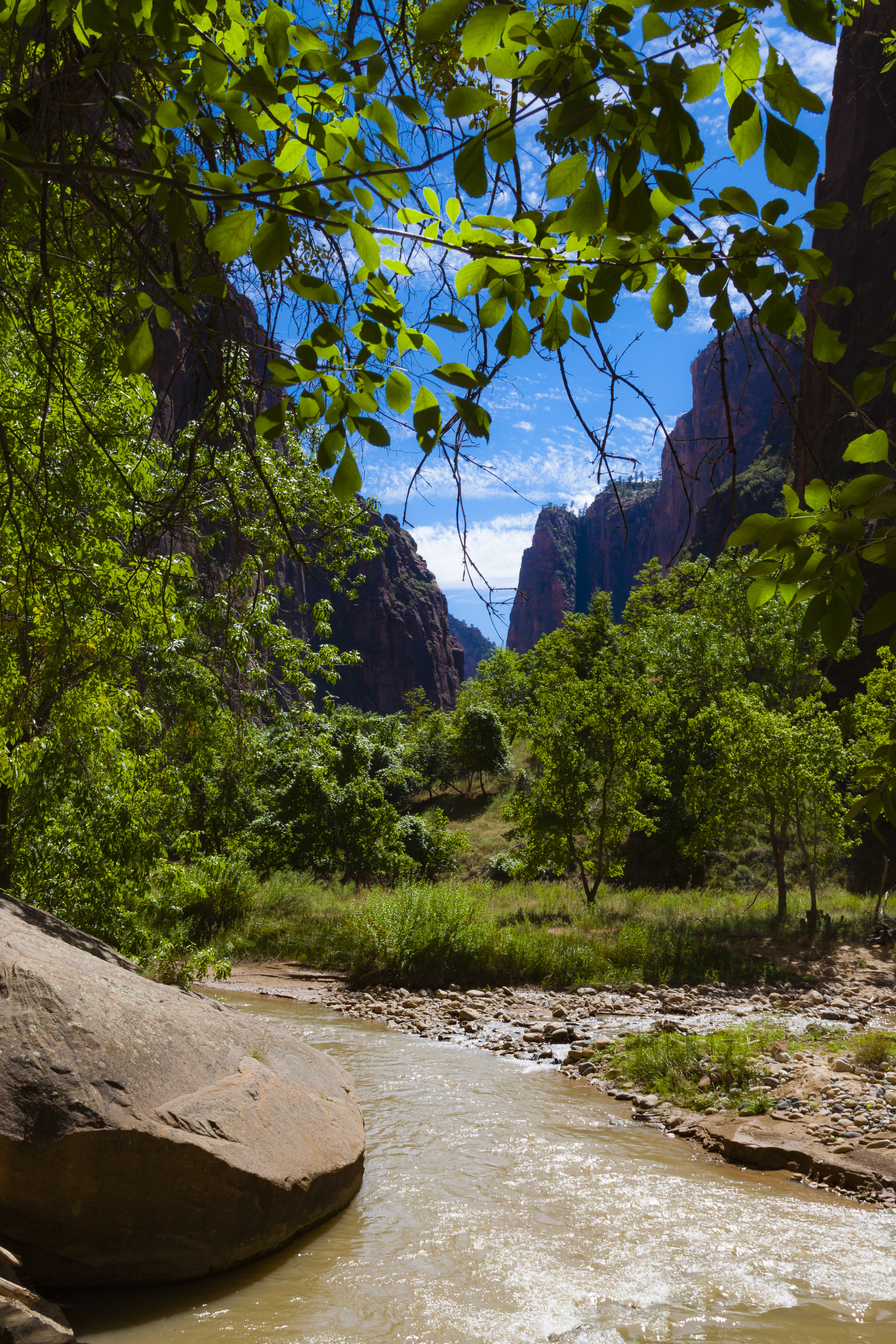 126770 download wallpaper Nature, Rivers, Trees, Stones, Mountains, Branches screensavers and pictures for free
