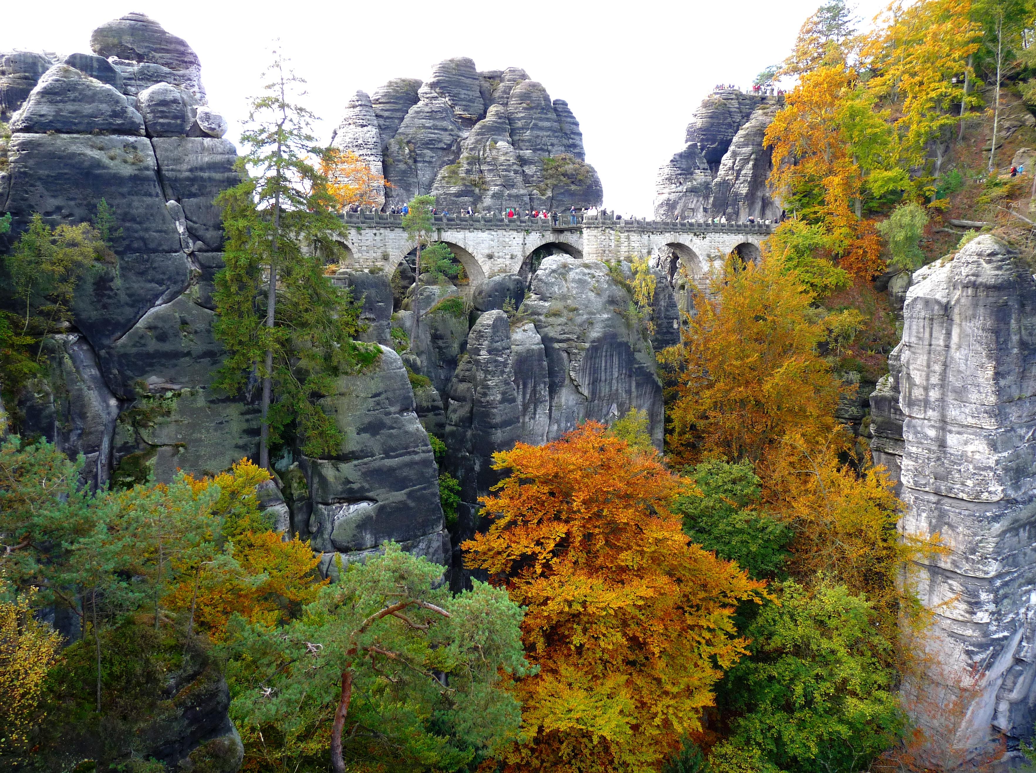 68323 Hintergrundbild 800x480 kostenlos auf deinem Handy, lade Bilder Landschaft, Natur, Bäume, Felsen, Die Steine, Brücke 800x480 auf dein Handy herunter