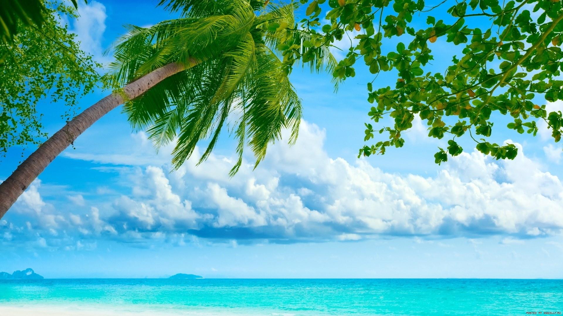 26939 免費下載壁紙 景观, 海, 云, 海滩, 棕榈 屏保和圖片