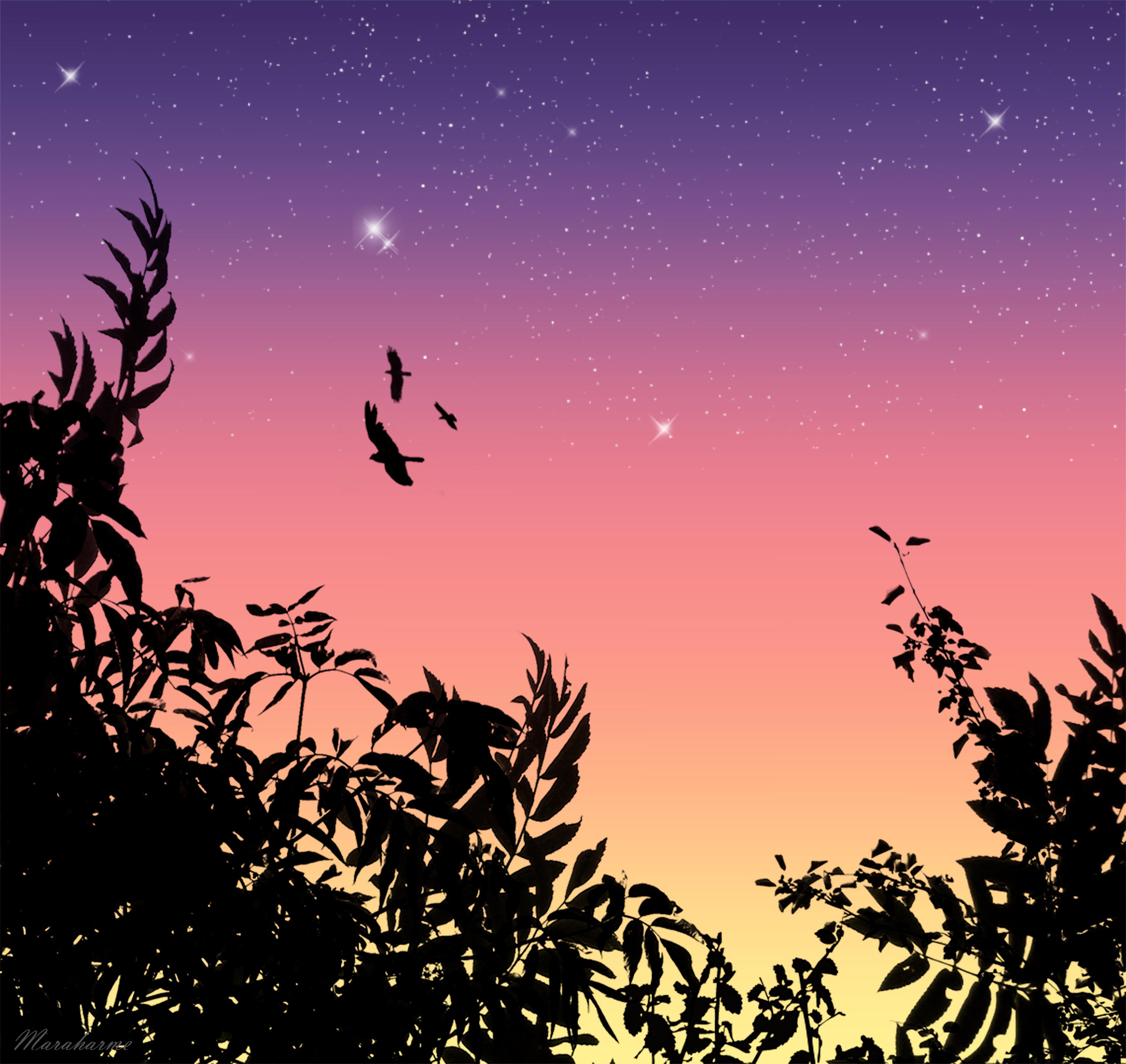 151614 Заставки и Обои Птицы на телефон. Скачать Вектор, Птицы, Звезды, Полет картинки бесплатно