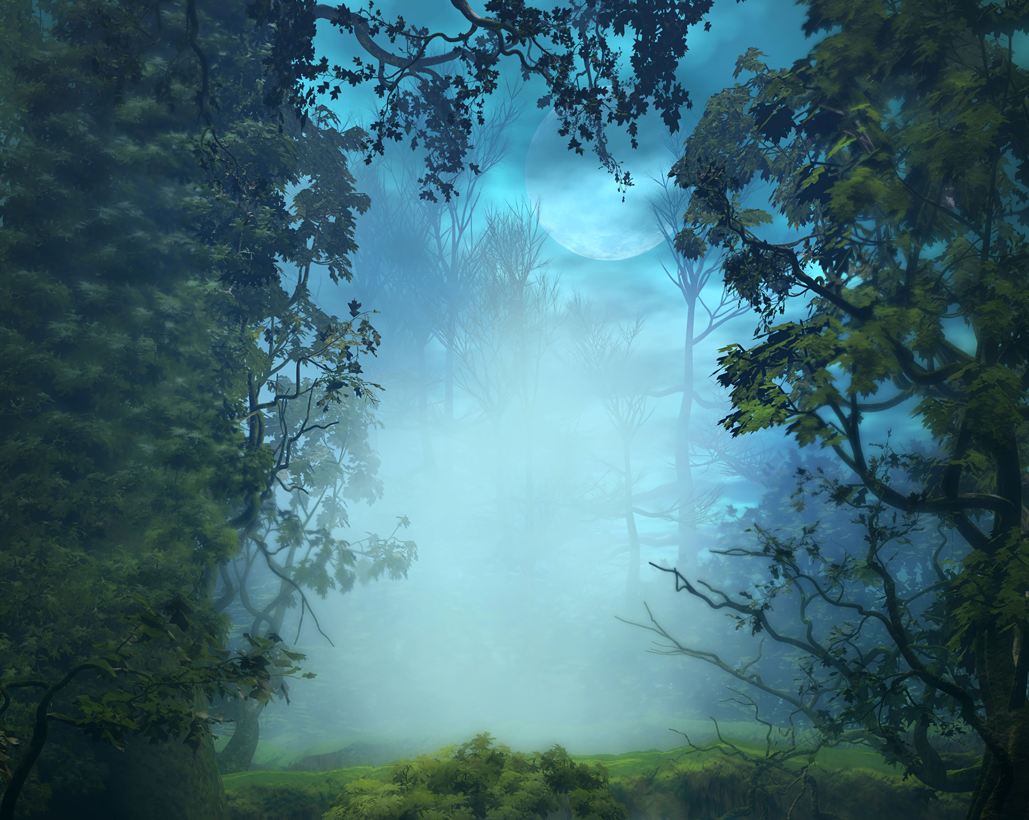 69657 download wallpaper Nature, Trees, Art, Forest, Fog, Branches screensavers and pictures for free