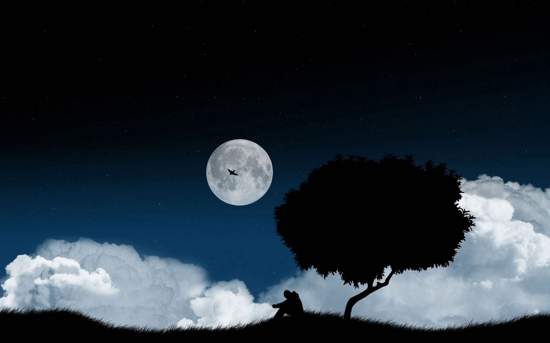91135 download wallpaper Loneliness, Sky, Night, Vector, Dark, Wood, Tree, Polyana, Glade screensavers and pictures for free