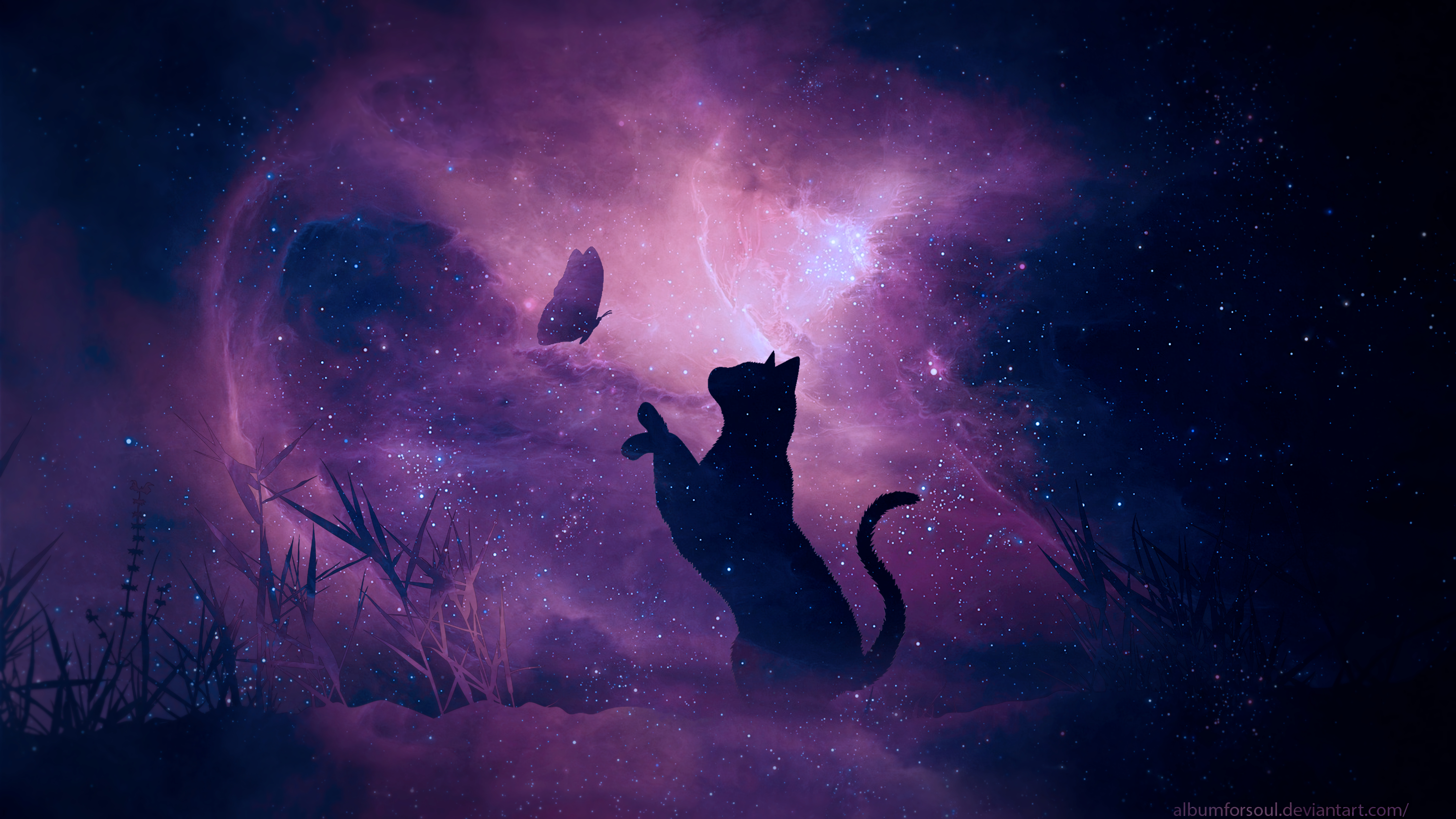 137119 download wallpaper Cat, Art, Stars, Shine, Silhouette, Starry Sky, Brilliance, Galaxy, Butterfly screensavers and pictures for free