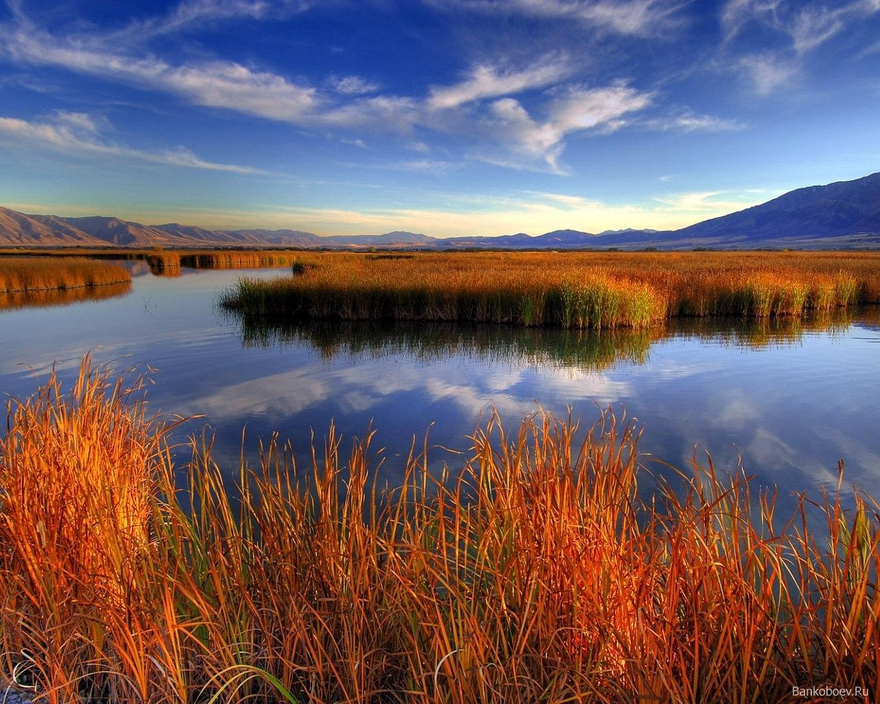 3328 скачать обои Пейзаж, Река, Трава - заставки и картинки бесплатно