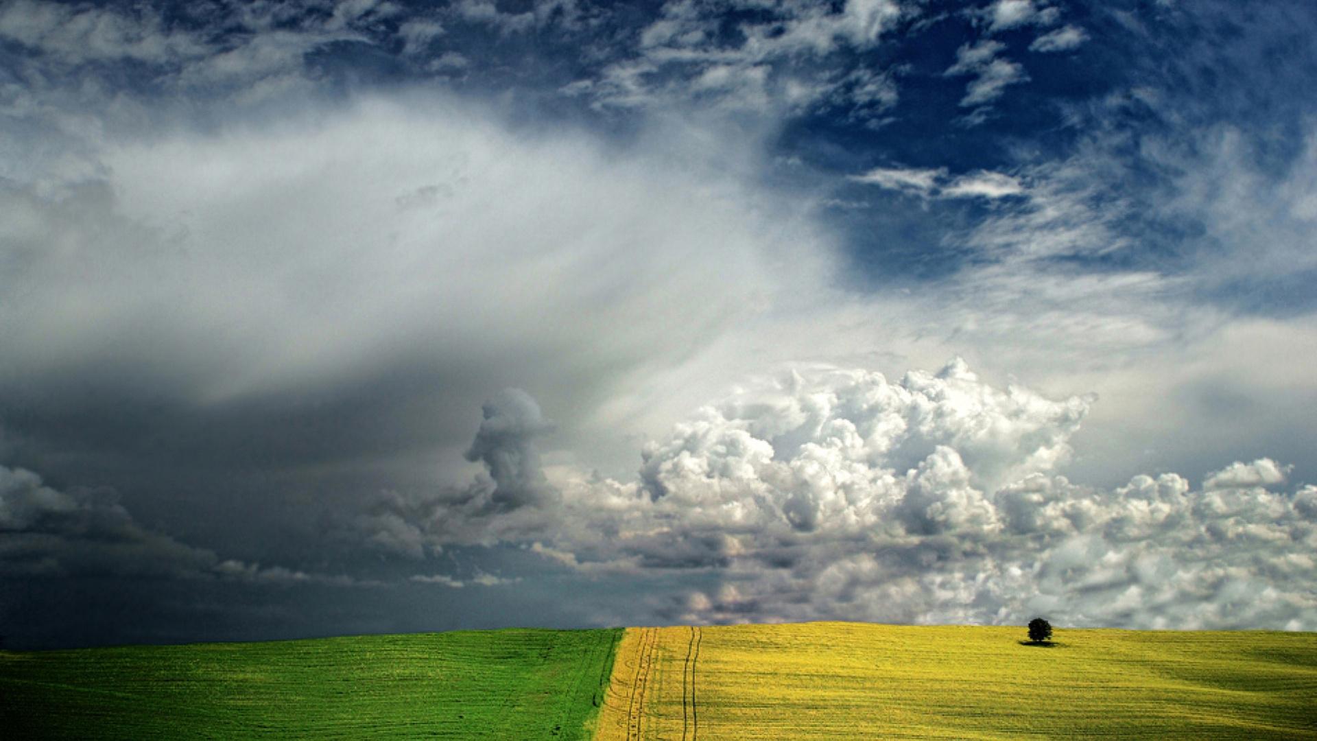 37692 скачать обои Пейзаж, Поля, Облака - заставки и картинки бесплатно