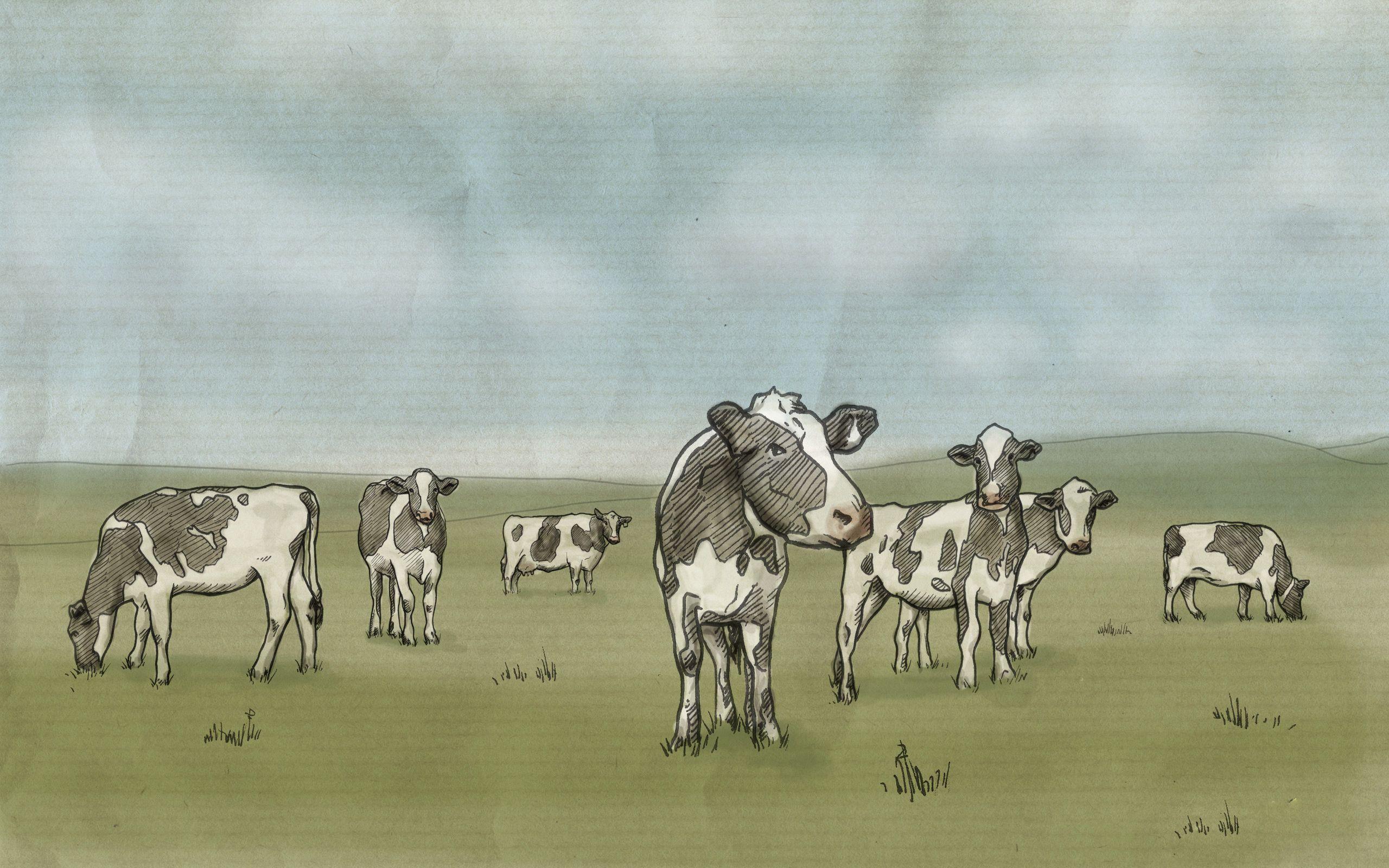 141154 скачать обои Арт, Рисунок, Молоко, Луг, Коровы - заставки и картинки бесплатно