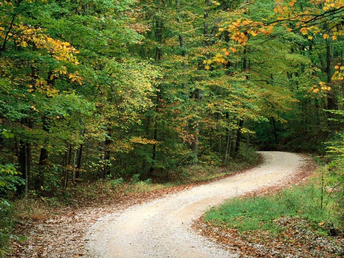 27708 download wallpaper Landscape, Trees, Roads, Autumn screensavers and pictures for free