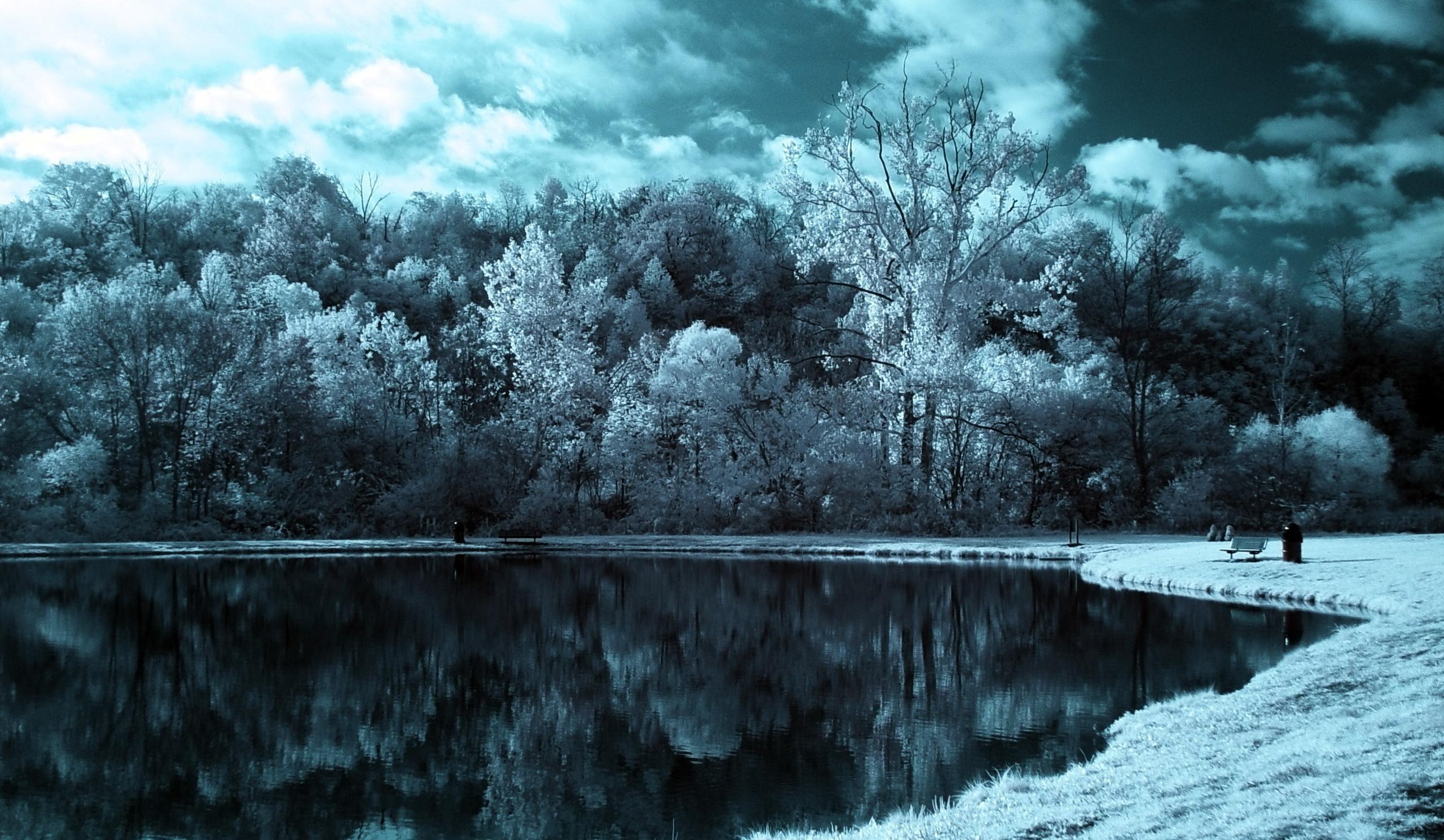 136437 baixar papel de parede Natureza, Lago, Árvores, Nuvens, Sombrio, Preto E Branco - protetores de tela e imagens gratuitamente