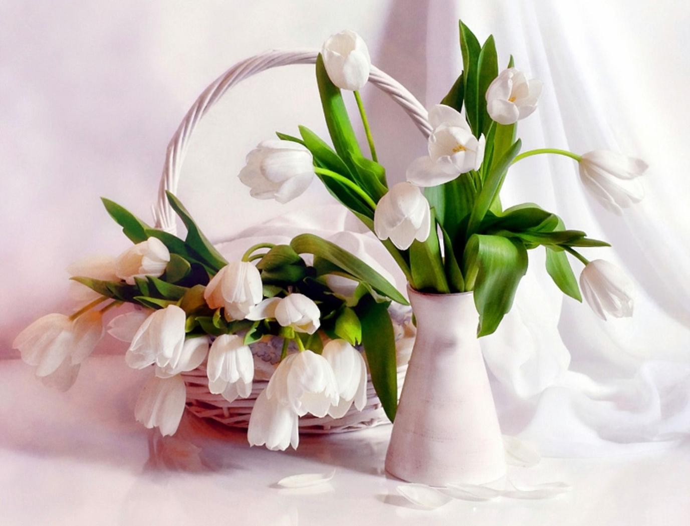 34837 télécharger le fond d'écran Plantes, Fleurs, Bouquets - économiseurs d'écran et images gratuitement