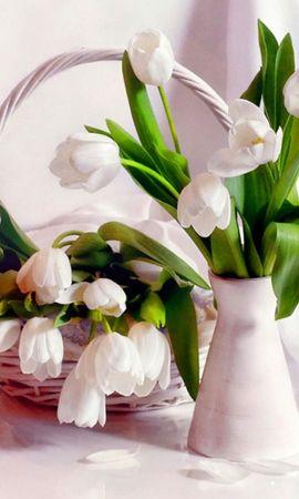 34837 скачать обои Растения, Цветы, Букеты - заставки и картинки бесплатно