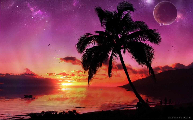 7417 скачать обои Пейзаж, Деревья, Закат, Небо, Море, Пальмы - заставки и картинки бесплатно