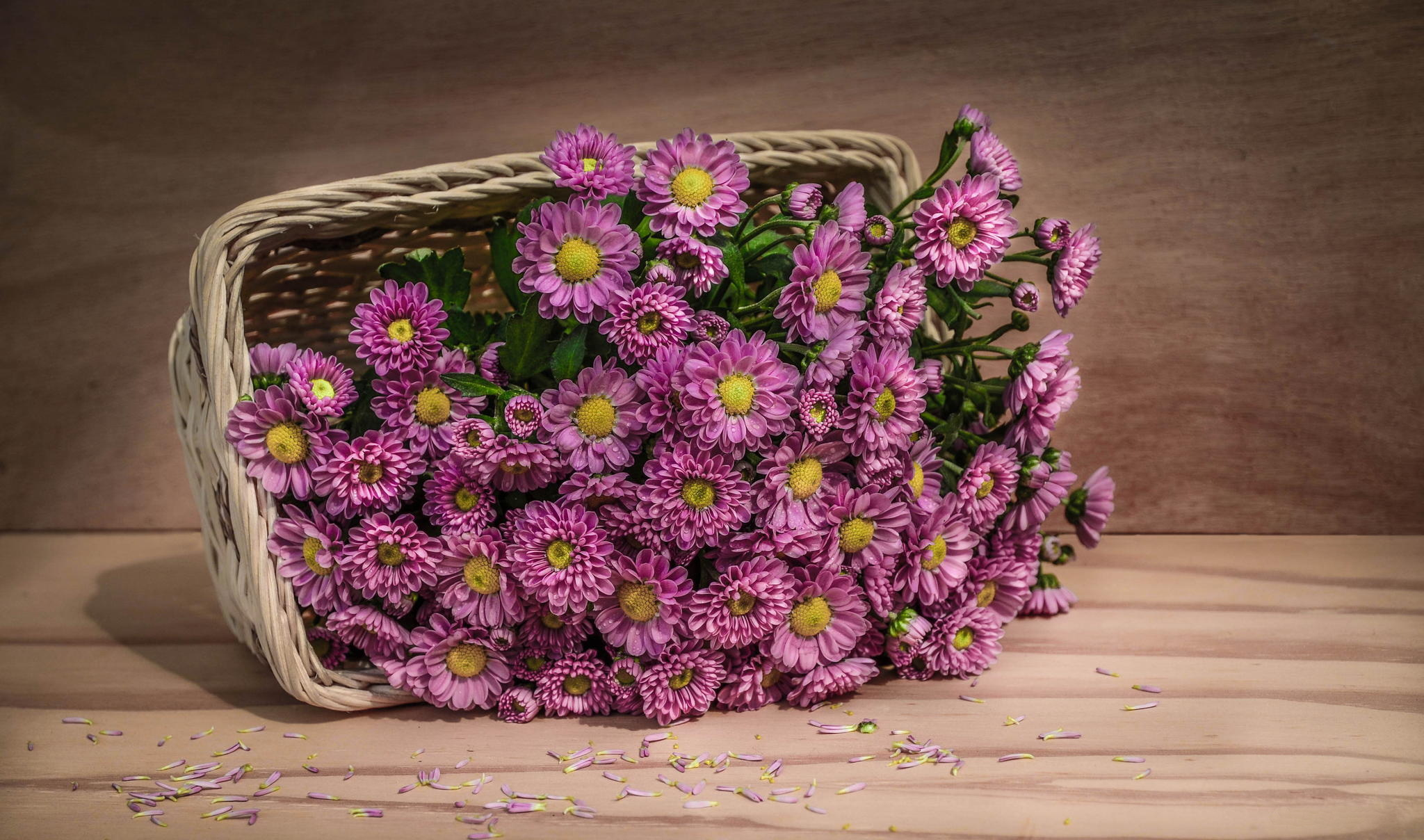 100174 free wallpaper 1440x2560 for phone, download images Flowers, Petals, Basket 1440x2560 for mobile
