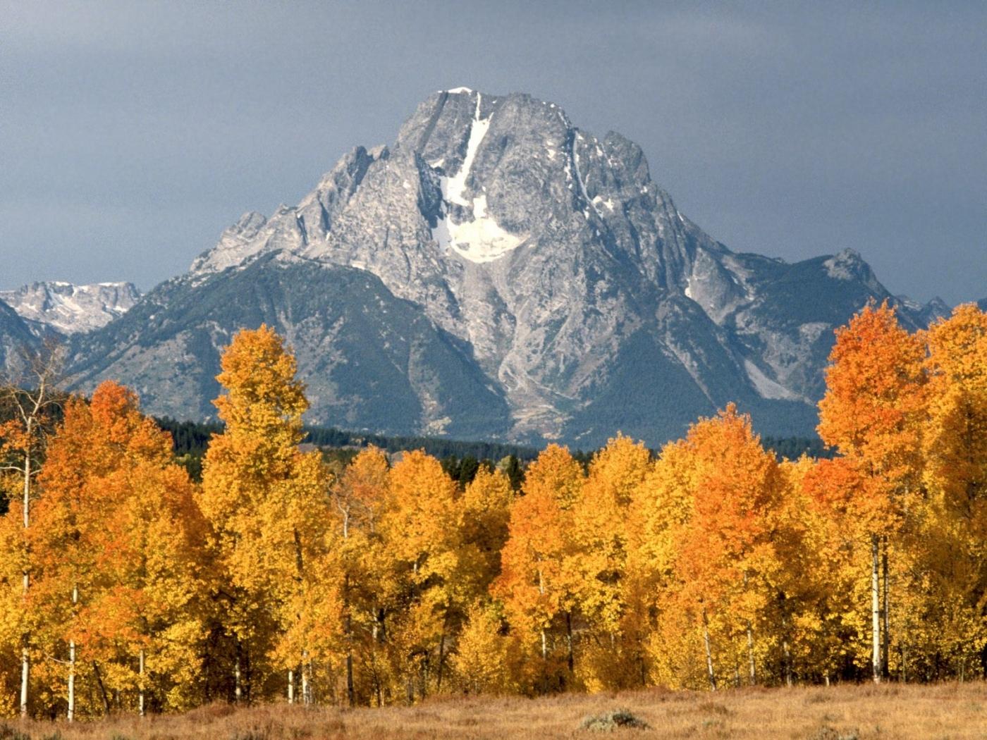 24034 скачать обои Пейзаж, Деревья, Горы, Осень - заставки и картинки бесплатно
