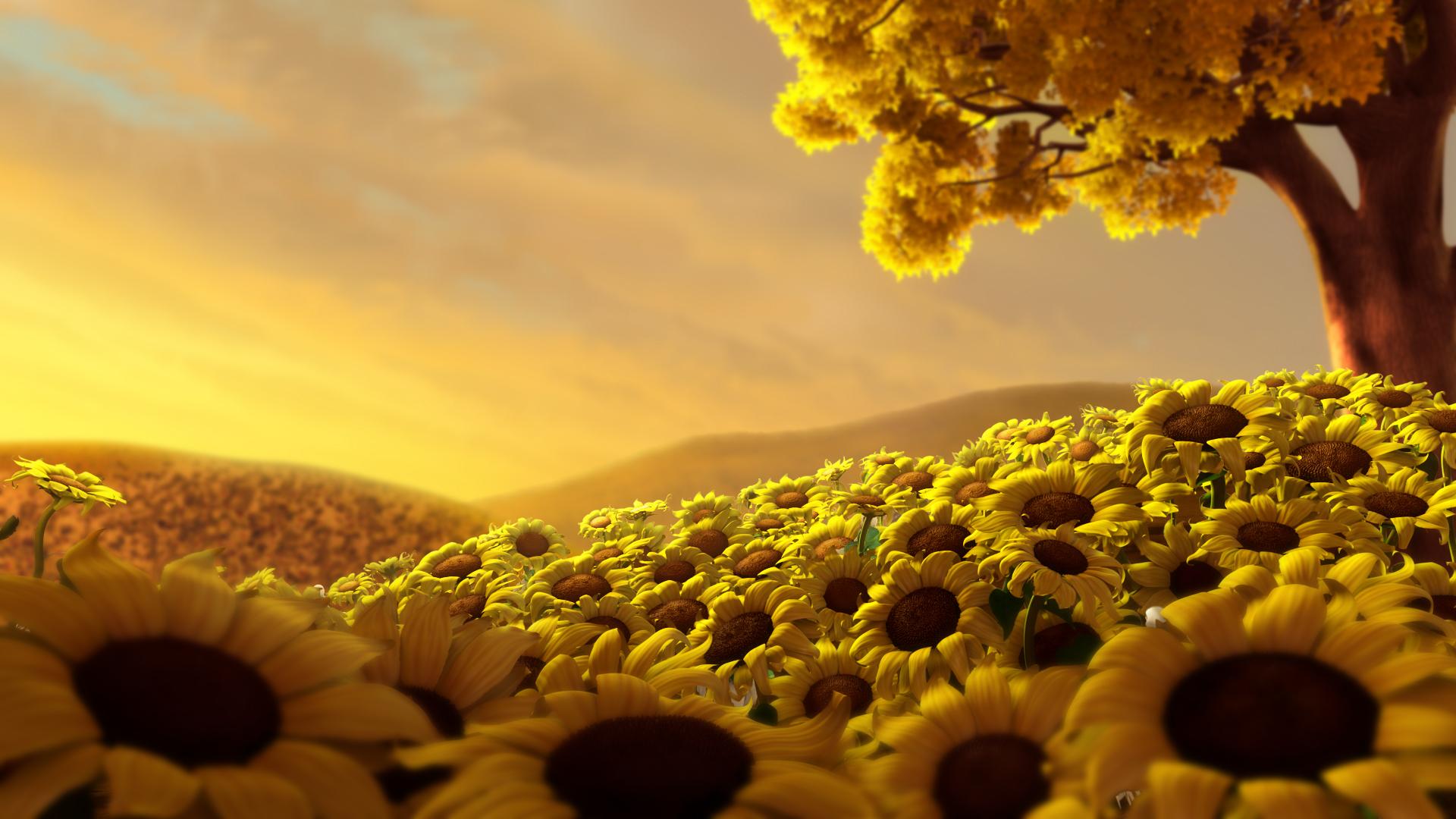 35402 скачать обои Цветы, Фон, Подсолнухи - заставки и картинки бесплатно