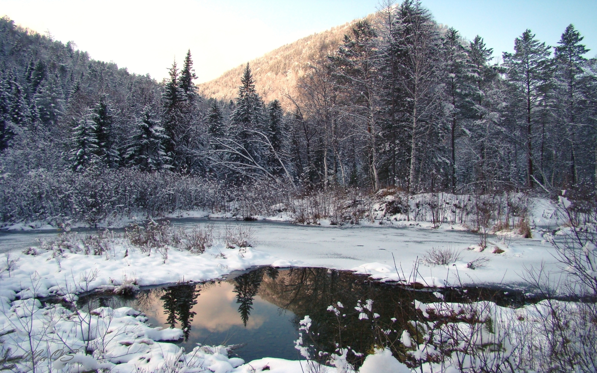 8068 download wallpaper Landscape, Winter, Trees, Snow, Fir-Trees, Lakes screensavers and pictures for free