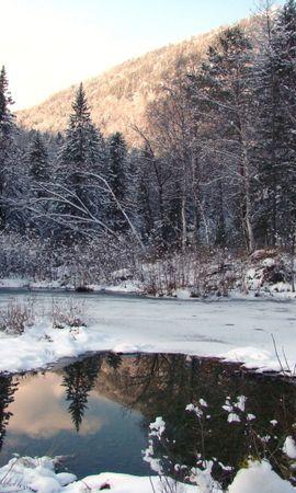 8068 скачать обои Пейзаж, Зима, Деревья, Снег, Елки, Озера - заставки и картинки бесплатно