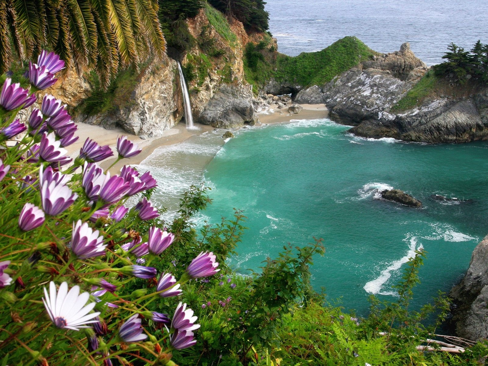 5315 скачать обои Цветы, Пейзаж, Море, Пляж - заставки и картинки бесплатно