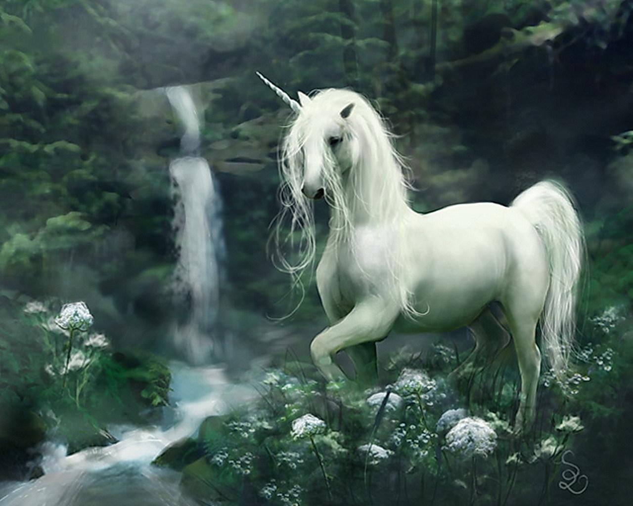 11669 скачать обои Животные, Фэнтези, Лошади, Единороги - заставки и картинки бесплатно