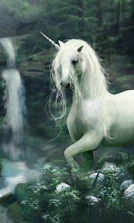 11669 baixar papel de parede Animais, Fantasia, Cavalos, Unicórnios - protetores de tela e imagens gratuitamente