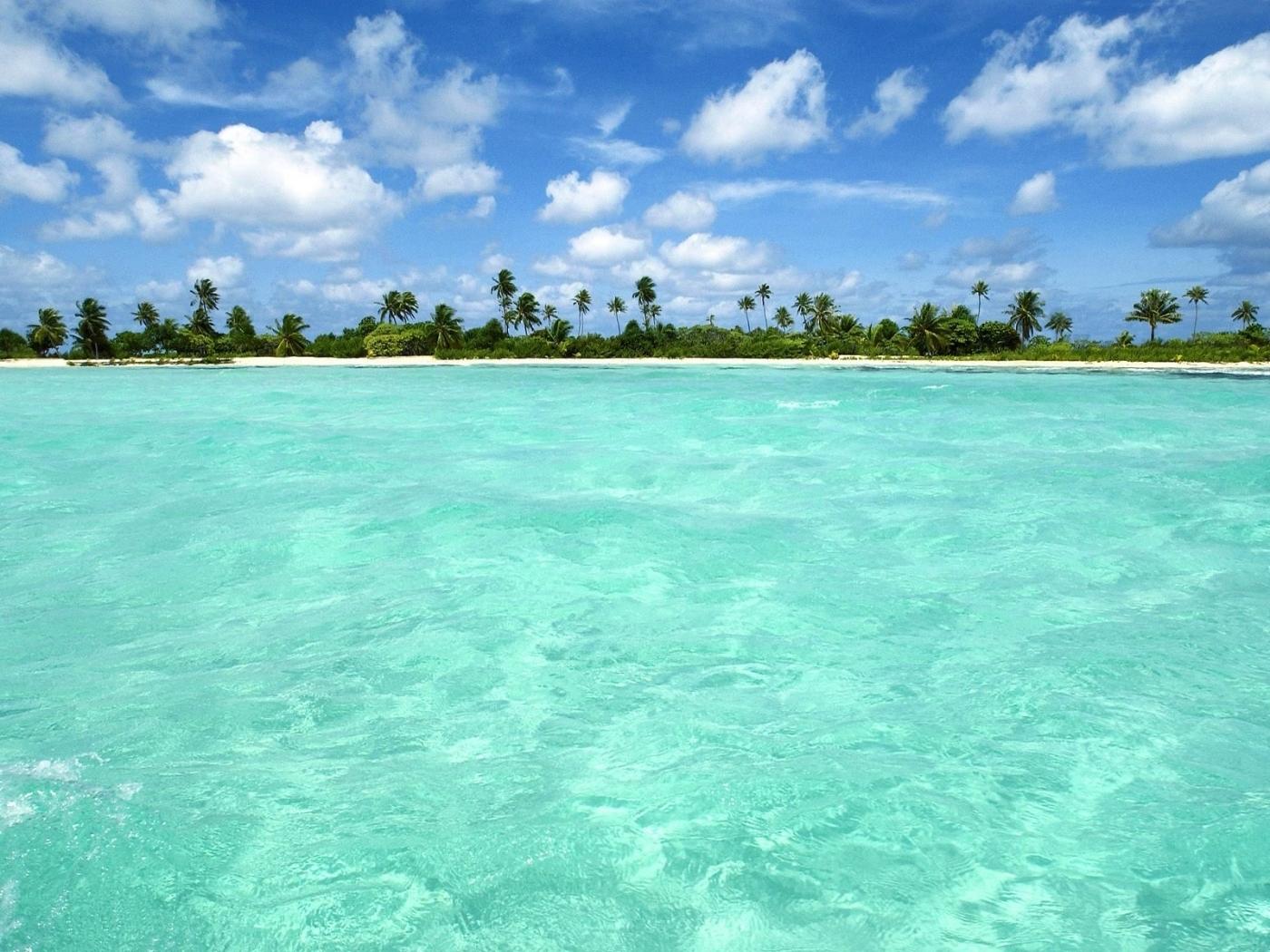 24308 скачать обои Пейзаж, Море, Облака, Пальмы - заставки и картинки бесплатно