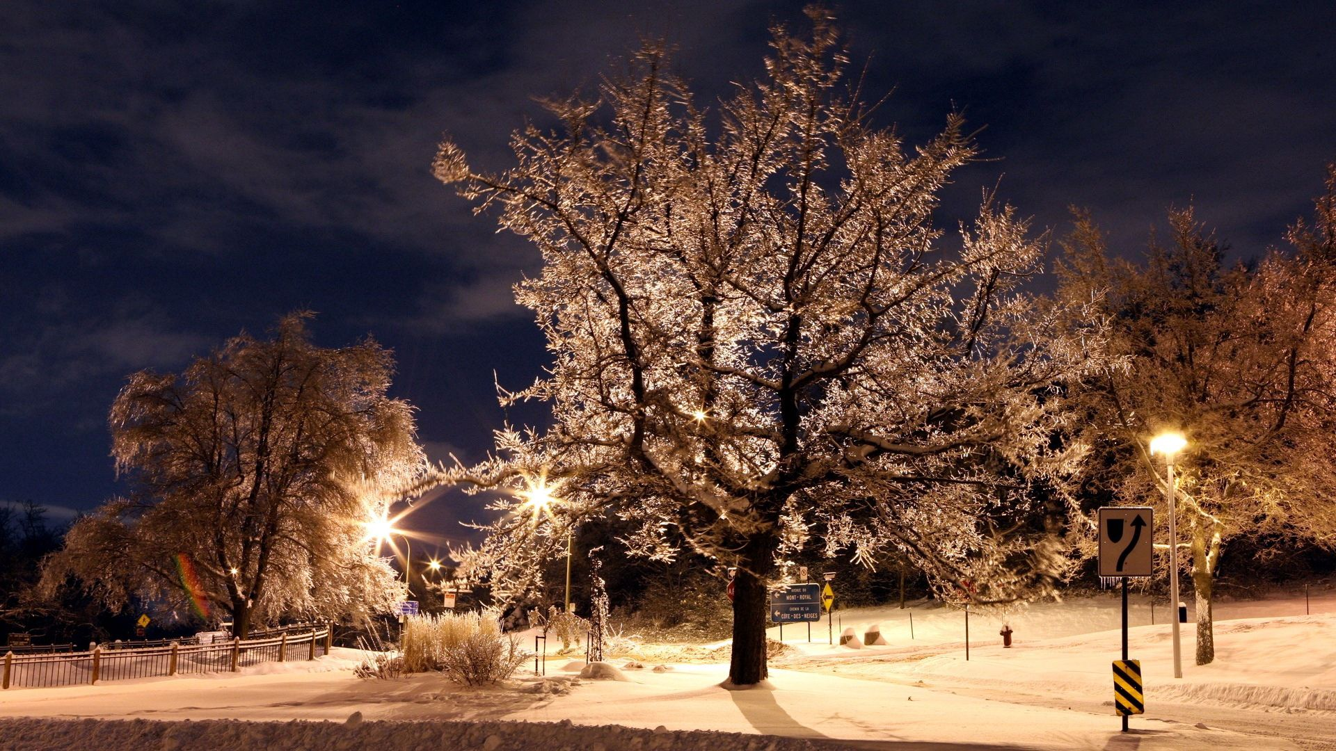 90684 скачать обои Зима, Природа, Деревья, Ночь, Знаки, Парк, Фонари, Иней - заставки и картинки бесплатно