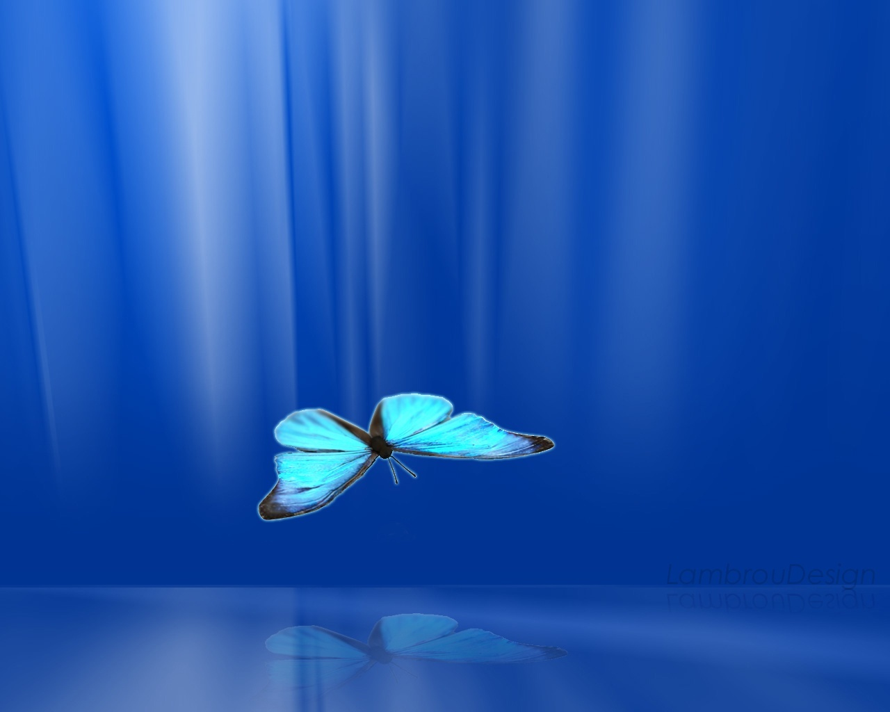 10258 download wallpaper Butterflies, Insects, Background screensavers and pictures for free
