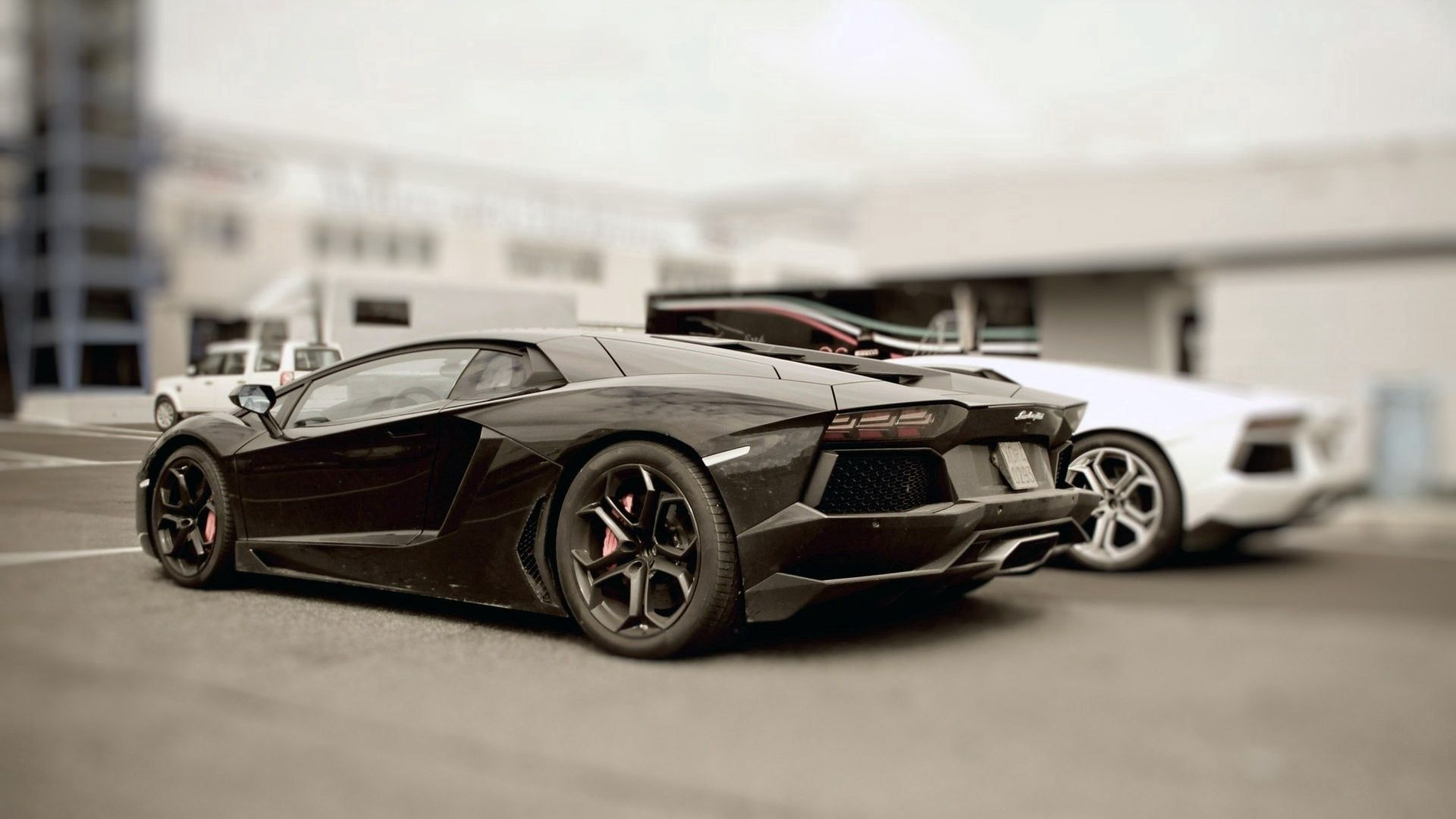 60384 download wallpaper Cars, Stylish, Auto, Lamborghini screensavers and pictures for free