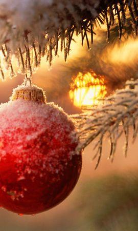16161 скачать обои Праздники, Новый Год (New Year), Рождество (Christmas, Xmas) - заставки и картинки бесплатно