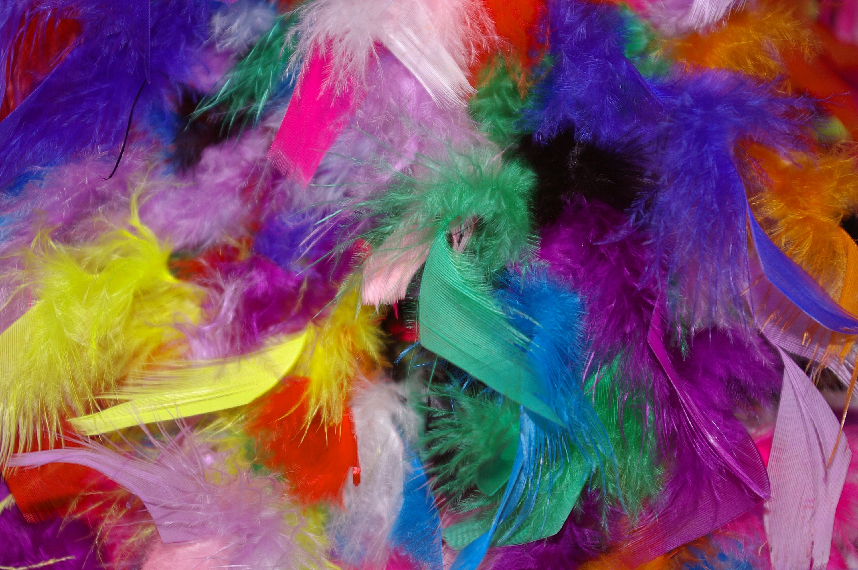 150433 download wallpaper Miscellanea, Miscellaneous, Background, Multicolored, Motley, Feather screensavers and pictures for free