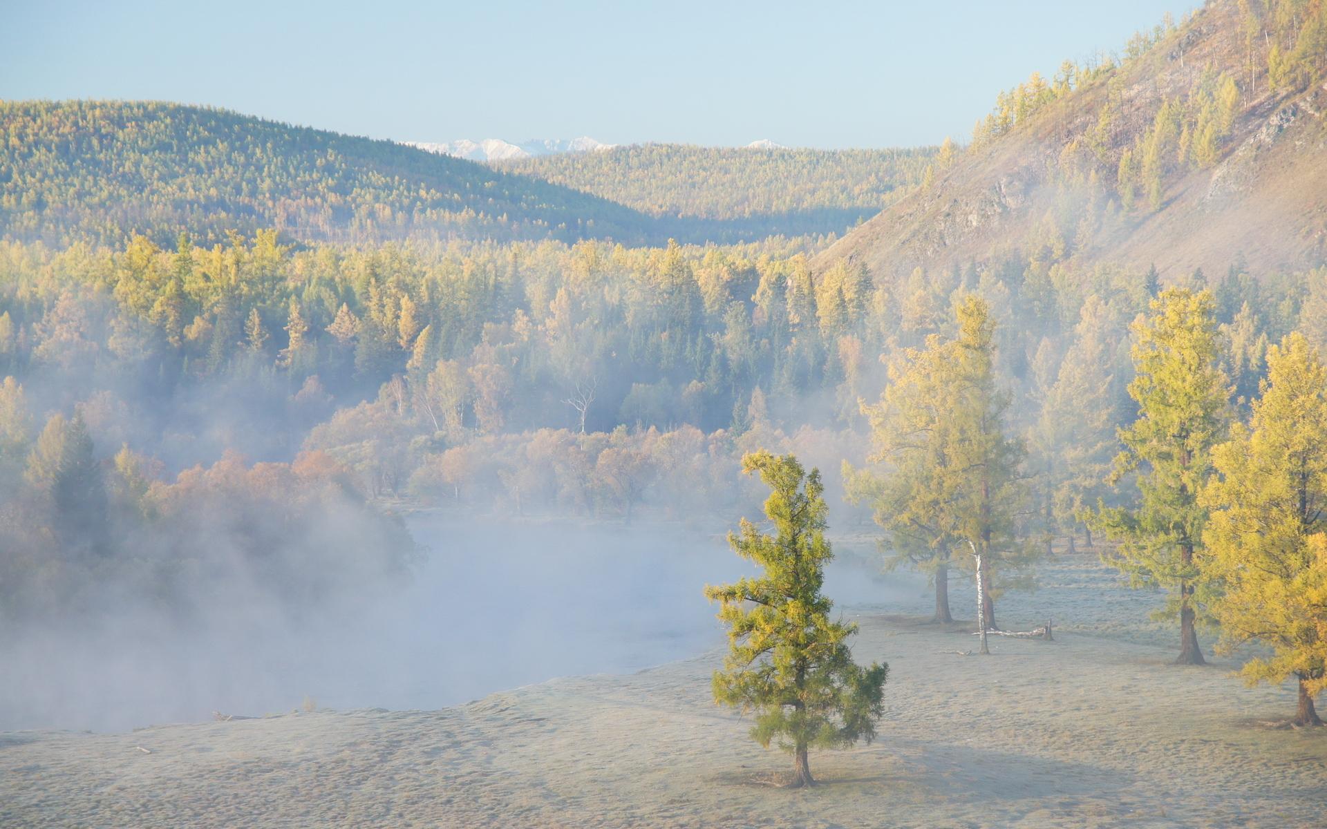 20699 скачать обои Пейзаж, Деревья, Горы - заставки и картинки бесплатно