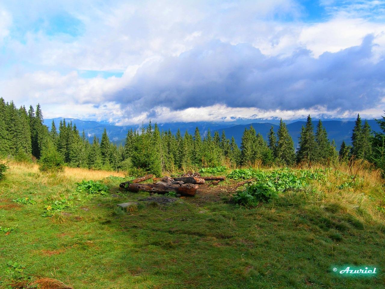 8316 скачать обои Пейзаж, Деревья, Небо - заставки и картинки бесплатно