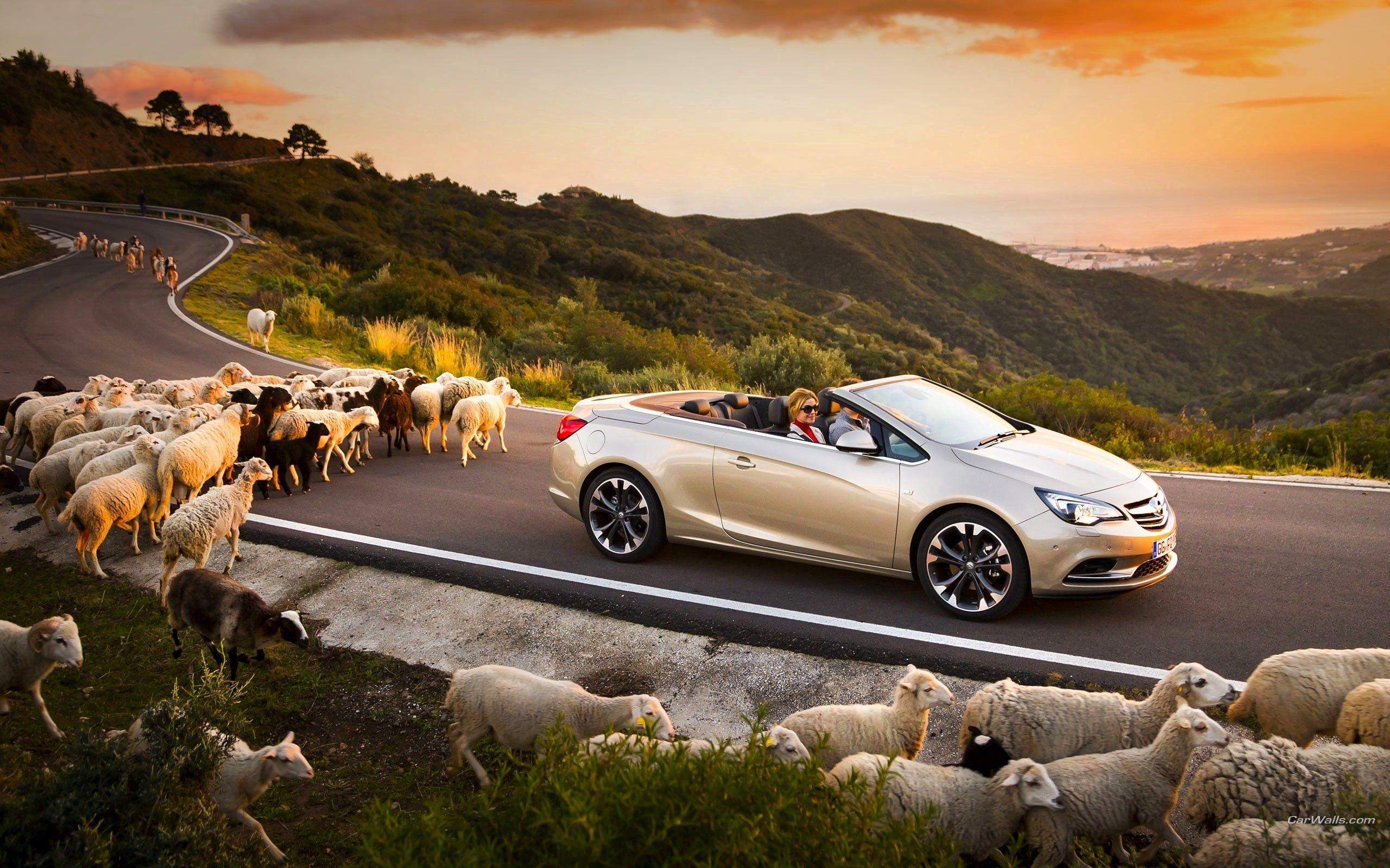 58548 Hintergrundbild herunterladen Auto, Sunset, Rams, Cars, Straße, Opel Kaskade, Opel Cascada - Bildschirmschoner und Bilder kostenlos