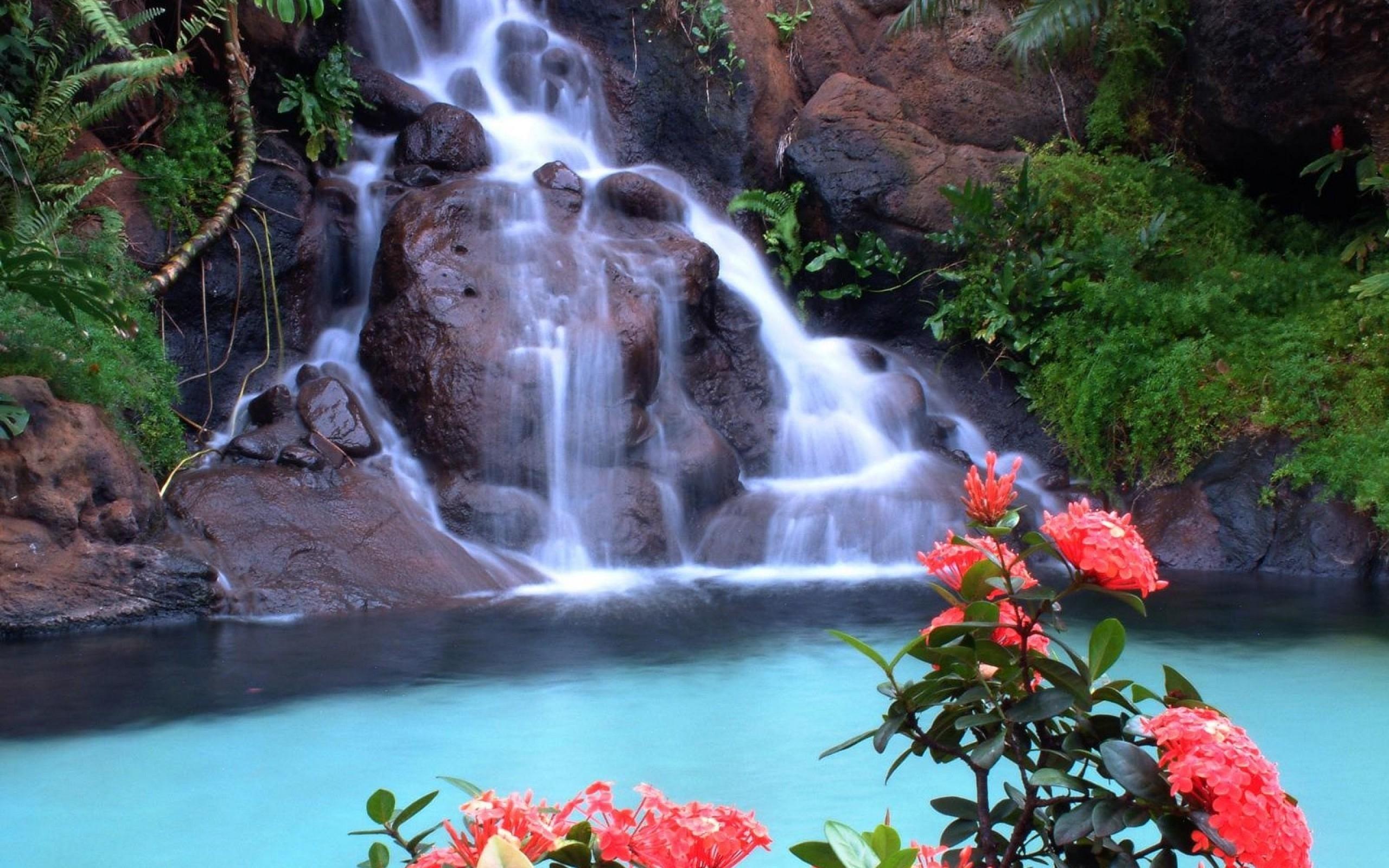 42484 télécharger le fond d'écran Cascades, Paysage, Nature - économiseurs d'écran et images gratuitement
