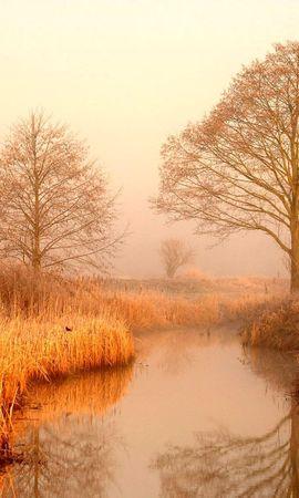 21952 скачать обои Пейзаж, Река, Деревья - заставки и картинки бесплатно