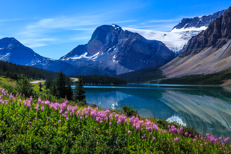 147027 скачать обои Озеро, Деревья, Природа, Горы, Пейзаж, Цветы - заставки и картинки бесплатно